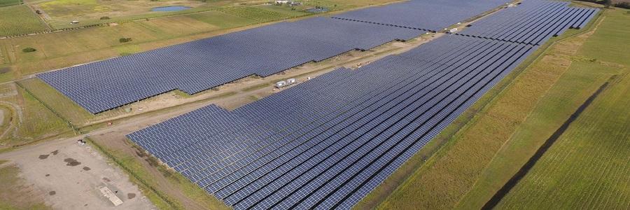 Sunshine Coast Solar Farm goes live in Australian first