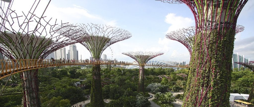 Sustainability stacking up in Singapore