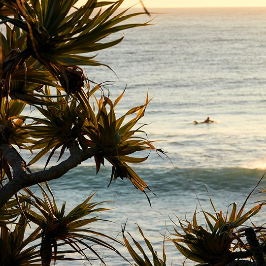 Why Invest in the Gold Coast